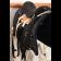Седло охотничье-грузовое купить в интернет магазине конной амуниции 11575